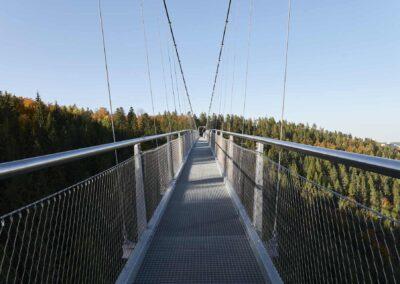 Webnet tämjer vild bro