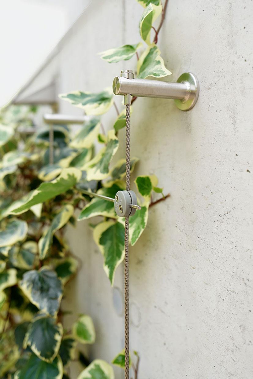 stöd för klätterväxter med enkel montering