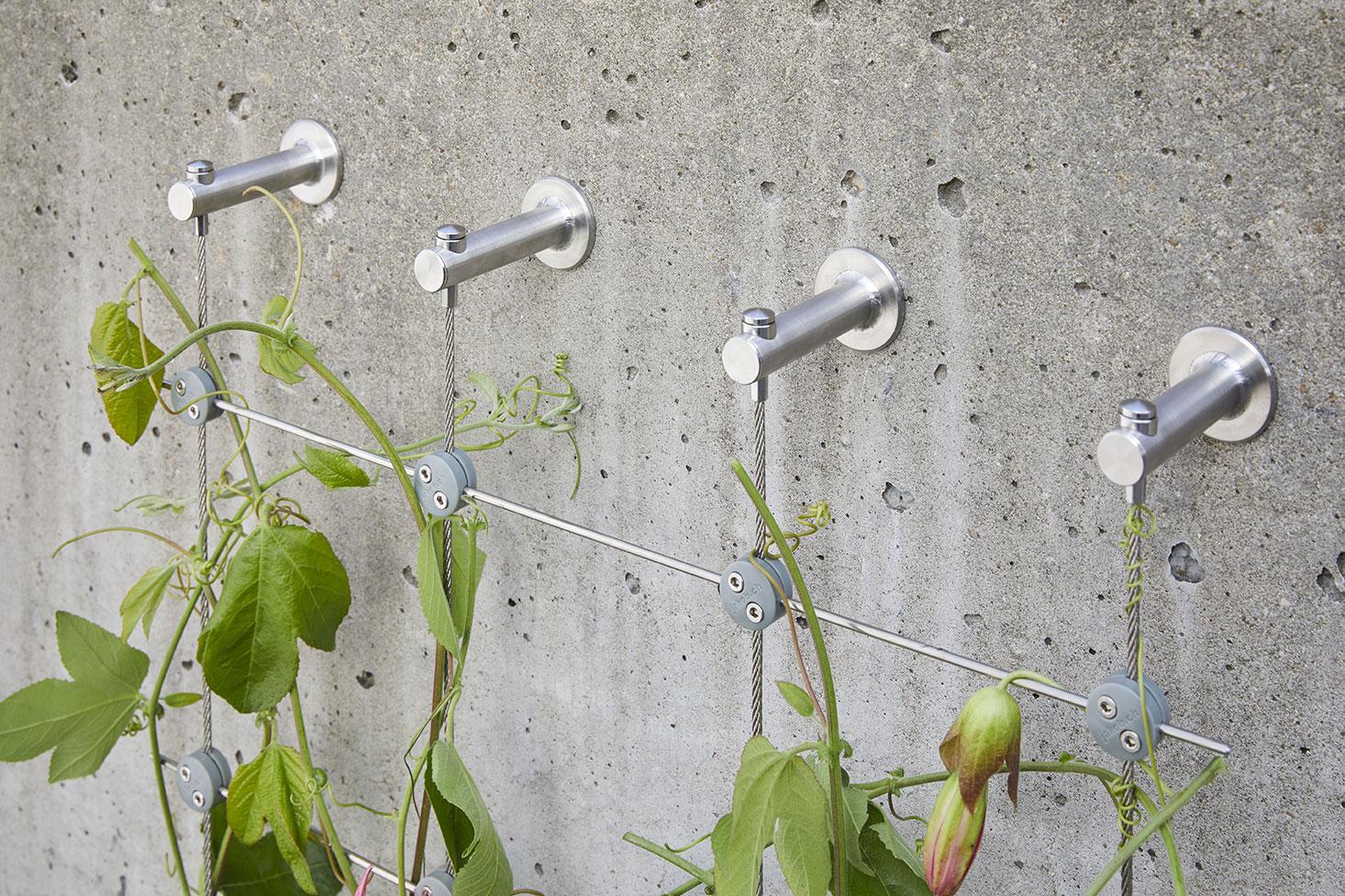 Klätternät för växter i trellisstruktur