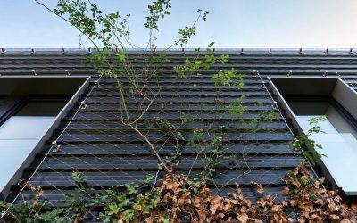 Grön fasad med Webnet