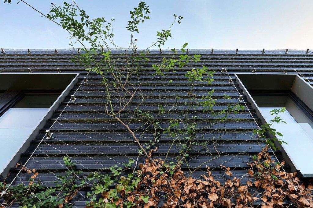 Lägenhetshus i Waterloo med greening genom Jakob Rope System och Webnet