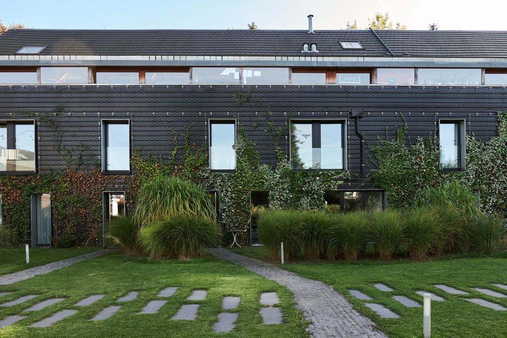Grön vägg med rostfritt vajernät som ger bättre luft och ett trevligare inomhusklimat