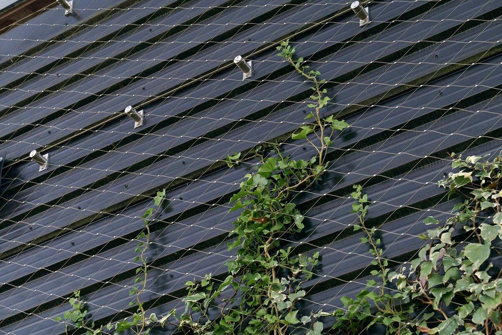 Rostfria vajernät för klättrande växter på väggar och fasader