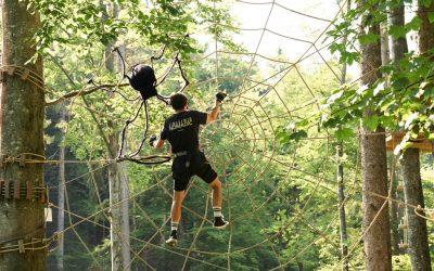 Rep och nät som skapar en säker och fantastisk upplevelse bland träden