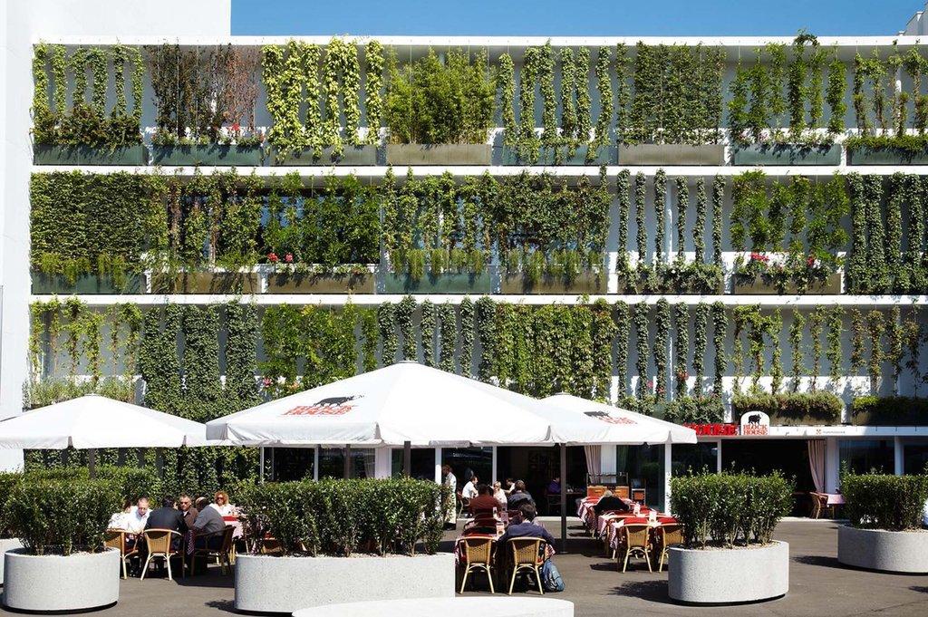 Lösning för Greening med vajersystem i rostfritt stål