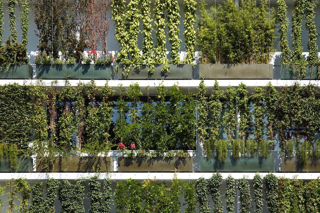 Greensolutions gröna väggar